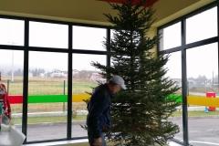 dolazak-božićnog-drvca